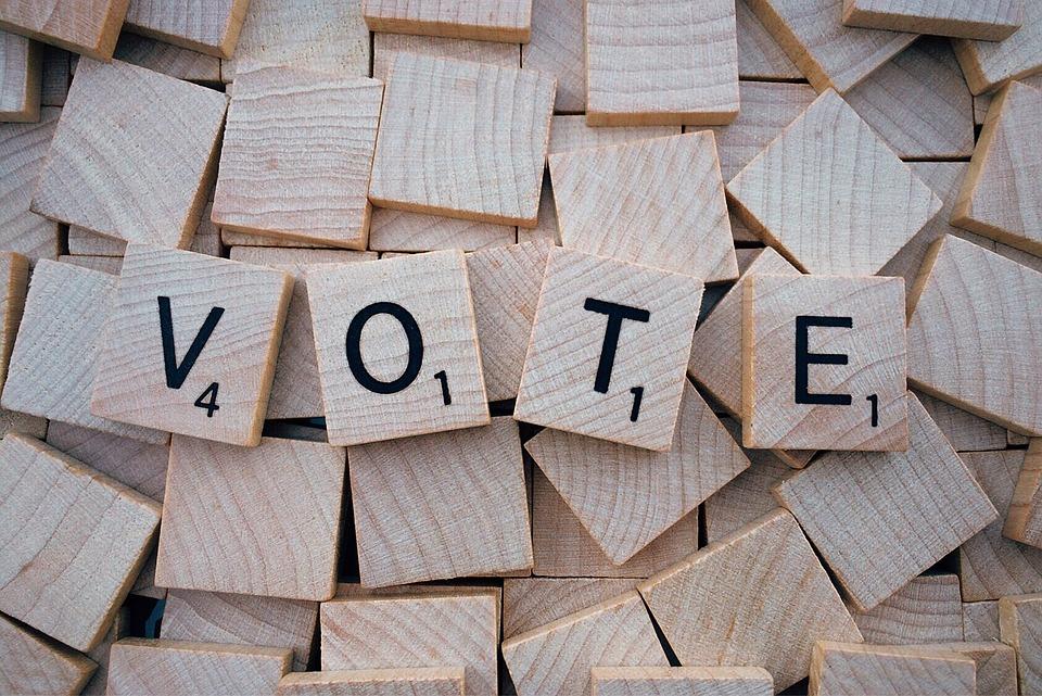 ley que permita votar a las personas con diversidad funcional