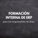 Formación interna de ERP para los Responsables de Línea
